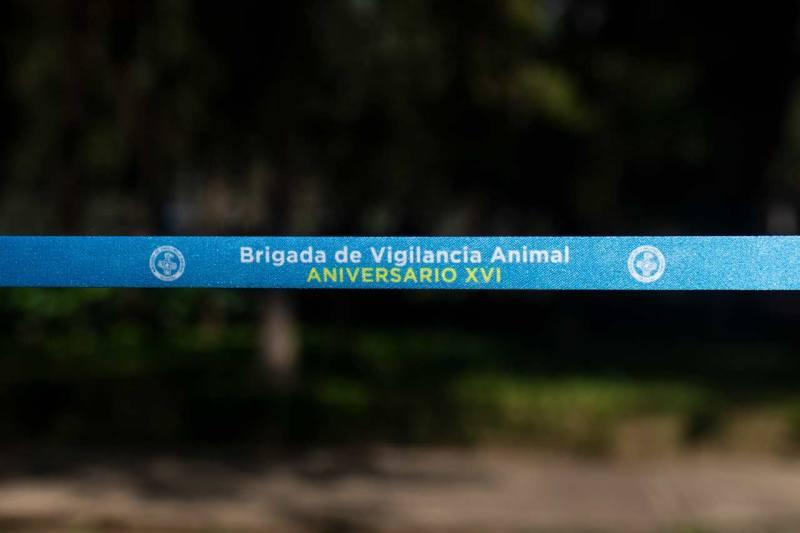 perros brigada de vigilancia