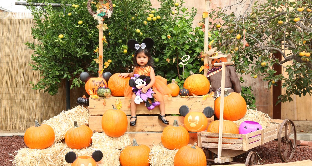 A Mickey's Not So Scary Halloween Inspired Birthday Party