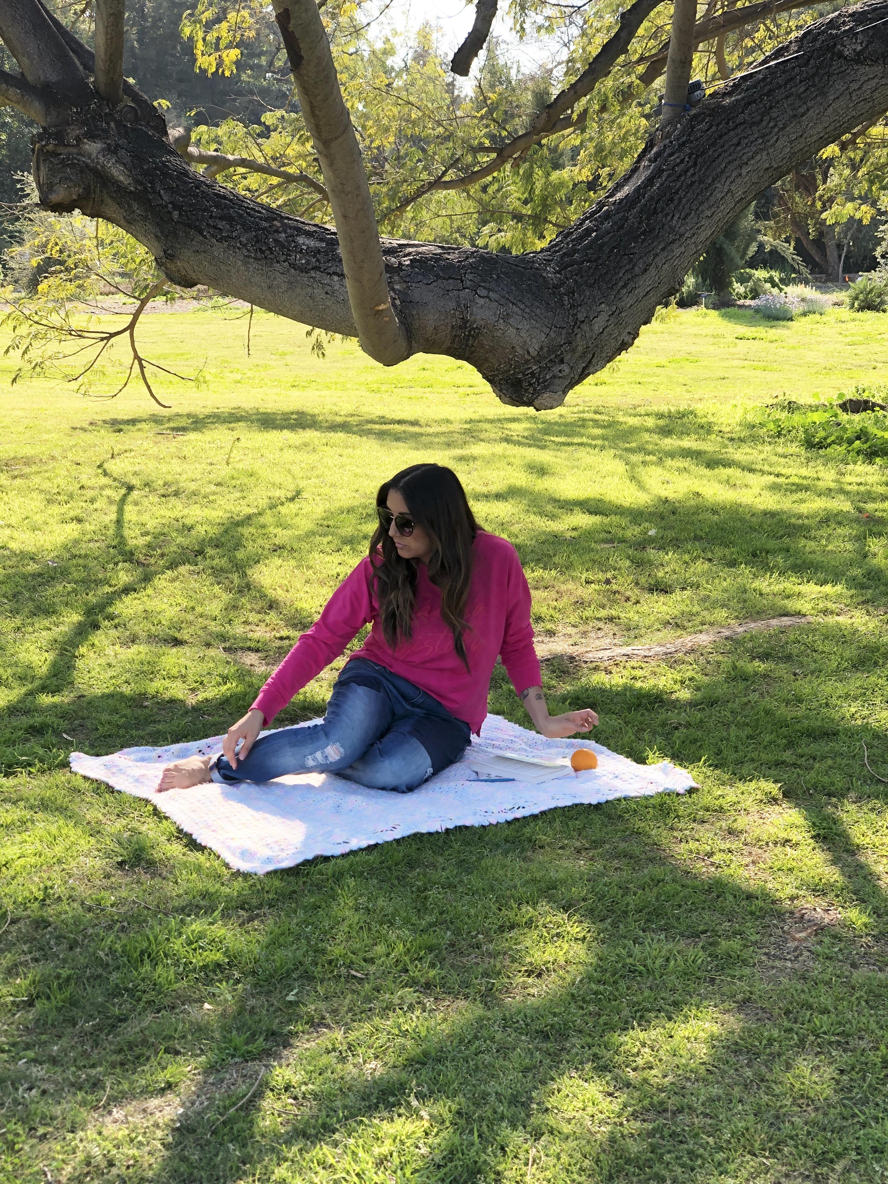 picnic at the arboretum