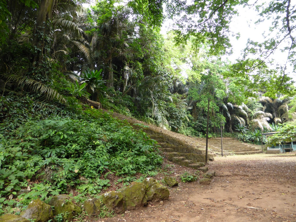 Jardin botanique de Limbé (Cameroun)