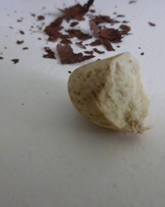 Garcinia kola seed