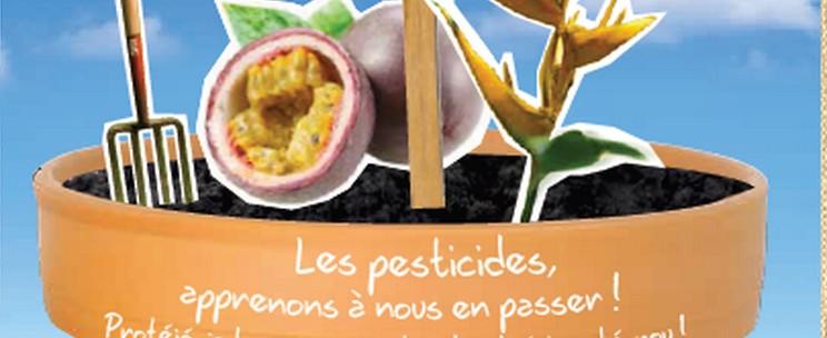 Guide à destination des jardiniers amateurs de Martinique (et en zone tropicale)