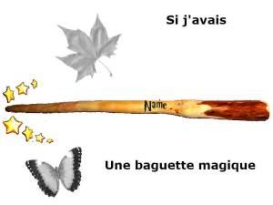 Si j'avais une baguette magique...