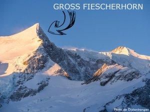 31ème sommet de plus de 4'000 mètres - Le Gross Fiescherhorn