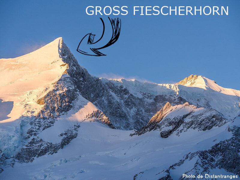 Vignette - Le Gross Fiescherhorn