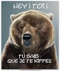 un_ours_fait_un_clin_doeil