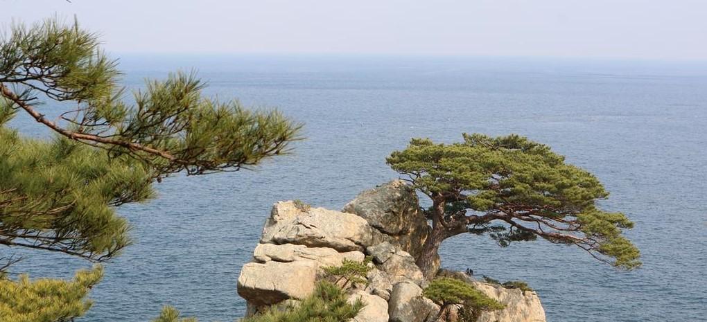 Vue_sur_les_pains_et_la_Mediterranee