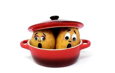 pommes_de_terre_dans_une_casserole