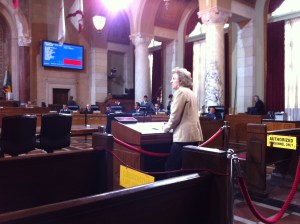 USC Visiting Scholar Calla Weimer addresses the council; photo by Eric Bruins