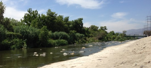 Eleven miles of the Los Angeles River are going to get a whole lot greener over the next decade as federal agencies step up their efforts. photo: Joe Linton / Streetsblog L.A.