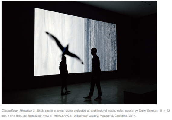 CircumSolar, Migration 3, 2013; single channel video projected at architectural scale, color, sound by Drew Schnurr; at 'REALSPACE,' Williamson Gallery, Pasadena, California, 2014. (screenshot from her website)