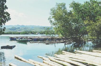 Carmen Cebu
