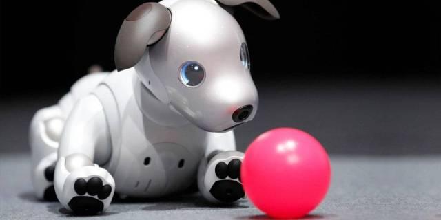 Japón: Robots reunidos en la feria tecnológica