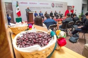 Se espera que el precio del frijol aumente en México por sequía