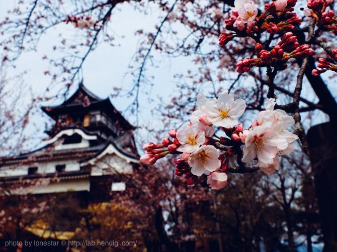 さすが国宝!犬山城と城下町が最高に楽しかった!観光地として愛知県ナンバーワンだと思った!