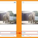 スライダーで簡単!iPhoneで写真を簡単にリサイズ出来るアプリを試してみた!