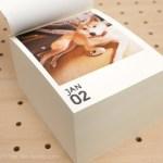 【 MYBOOK LIFE 365】愛犬の写真を使って日めくりカレンダーを作ってみました。