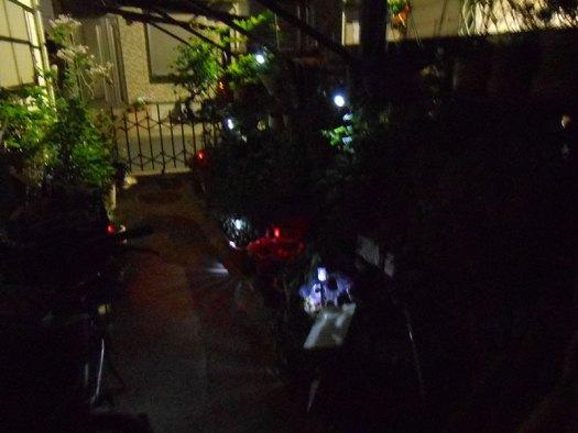 夜間 ガーデントーチ