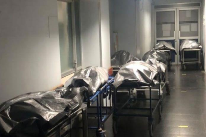 colapso en morgue