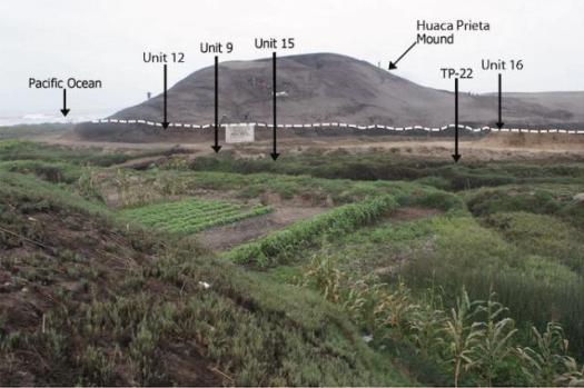 Городище Huaca Prieta, расположенное на террасе Sangamon Terrace (поверхность погребенной террасы с позднеплейстоценовыми и раннеголоценовыми культурными отложениями обозначена пунктирной линией ниже насыпи).