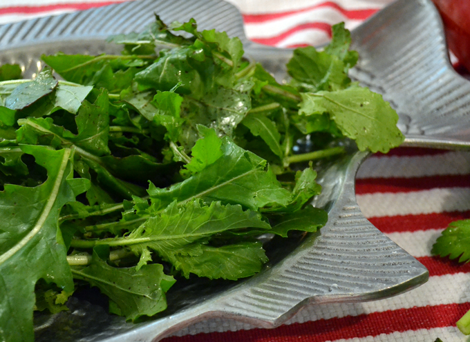 Wild Arugula for Tuna & Bean Salad | labellasorella.com