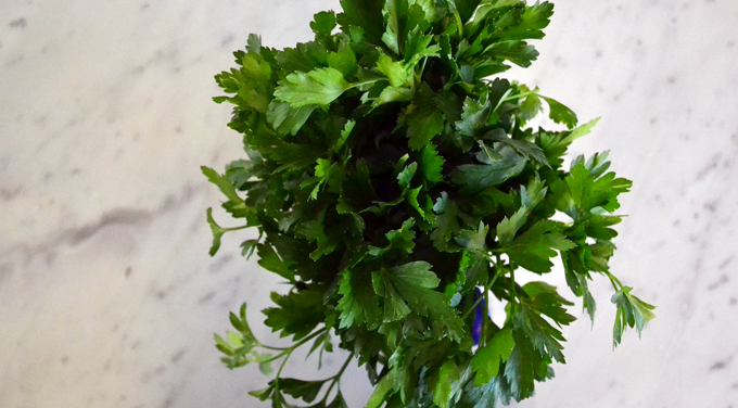 Flat leaf Italian parsley | labellasorella.com