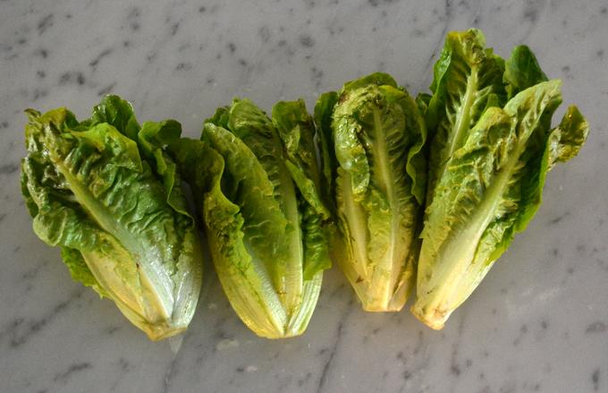 Organic Baby Gem lettuce | labellasorella.com