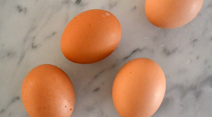 Farm fresh organic eggs | labellasorella.com
