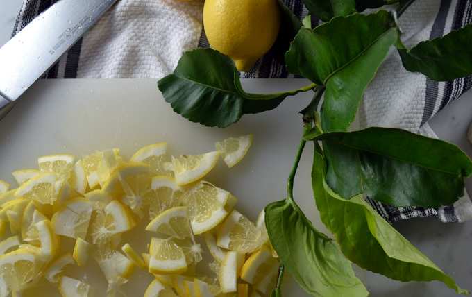 Thinly sliced lemon segments | labellasorella.com