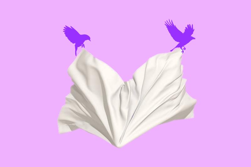 curtainbird