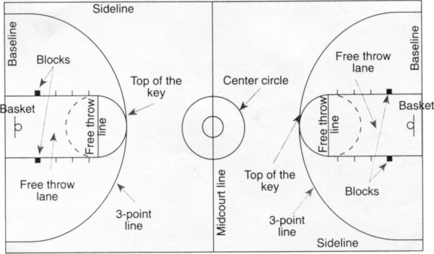 Diagram Of Basketball Court Labeled Basketball Court