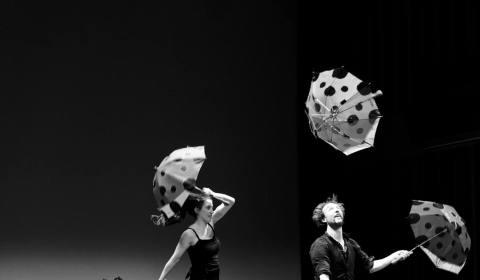 Circo Jean-françois Berhin 2