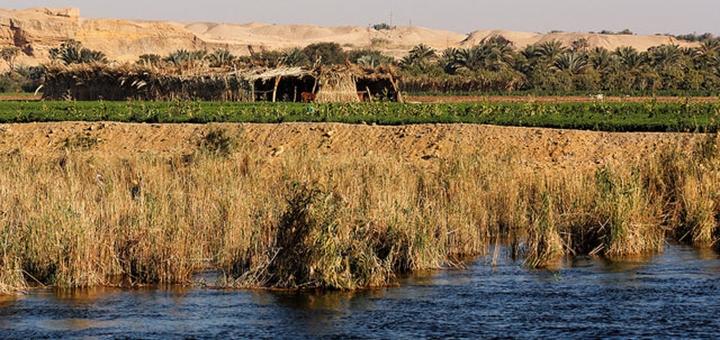 Fleuve Egypte