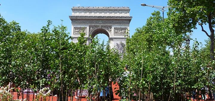 Paris vert