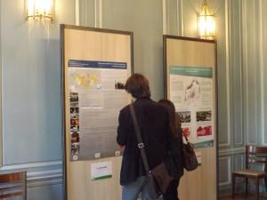 22 - Exposition de posters