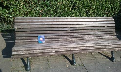 Un livre en voyage (qui bronze au soleil)