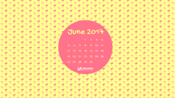 june-17-flamingood-vibes-only-cal-2560x1440