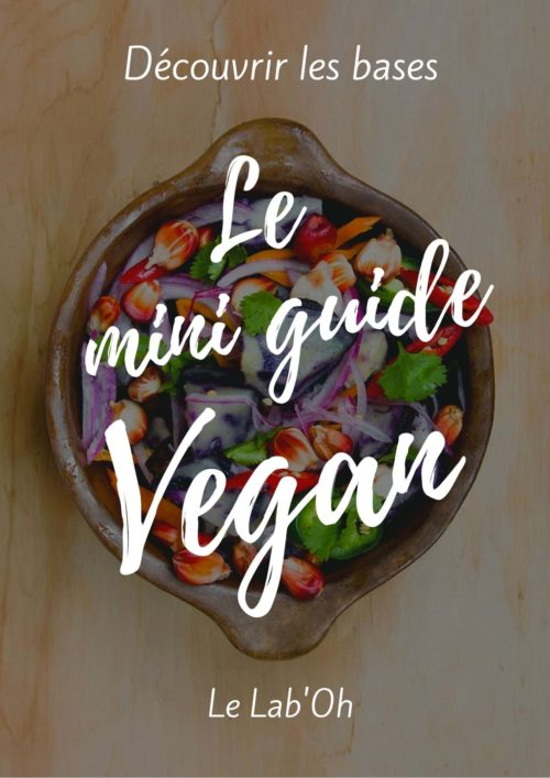 e book mini guide vegan Lab'oh