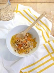 lartistique-porridge-façon-carrot-cake-9.jpg