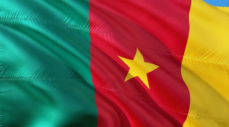 Con apoyo de RD, la disaster en Camerún llega finalmente al Consejo de Seguridad de la ONU