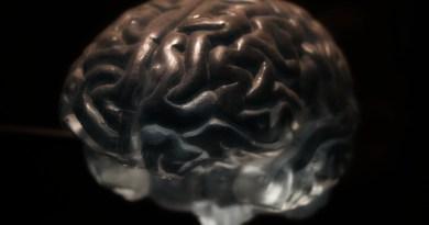 La pérdida de memoria a corto plazo se puede revertir estimulando el cerebro