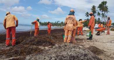 Brigadas MOPC retiran toneladas de sargazos y desechos sólidos en playas del este