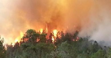 INCENDIOS FORESTALES: Dispositivo intenta evitar que el segundo fuego entre en un barranco
