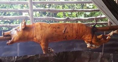 Alcaldía de Santiago: asadores de cerdos acogen disposición de formalizar permisos