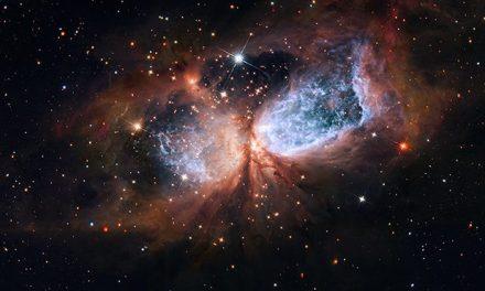 L'Universo «orgasmo» dell'Arché