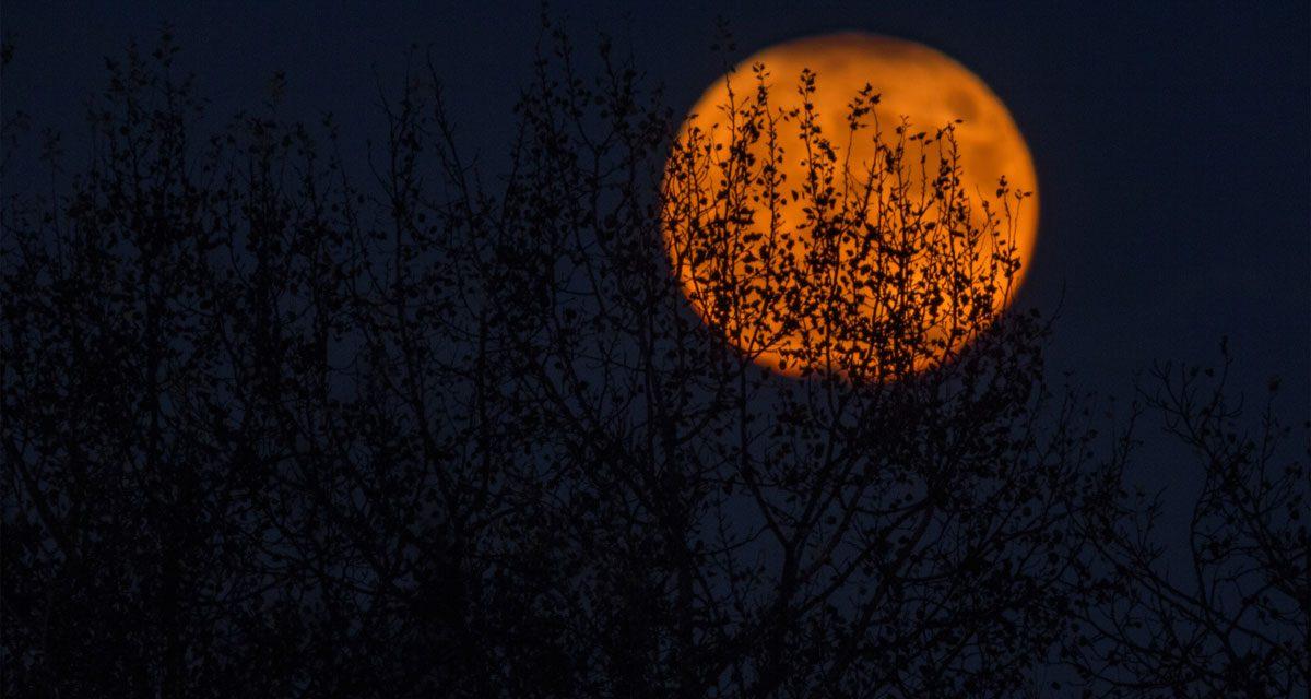 Samhain: il passaggio