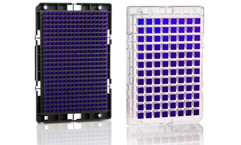 Affymetrix delivers Axiom strawberry array | Laboratory Talk