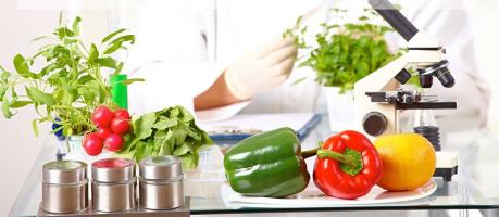 La ciencia de los alimentos. ¿Qué comer y para qué?