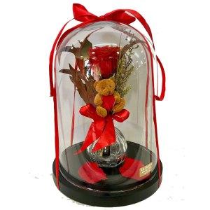 cupula del amor san valentín rosa roja preservada y osito peluche