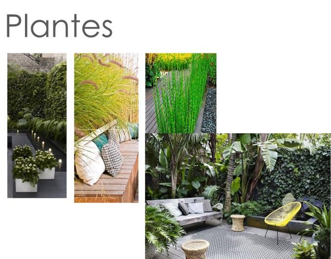 Terrasse plantes